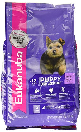 Eukanuba Puppy Small Breed Puppy Food, 5 lb (Best Puppy Food For Toy Breeds)