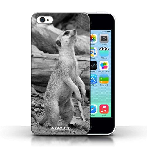 Kobalt® protector duro de nuevo caso / cubierta para el Apple iPhone 5C | Suricata Diseño | Animales de zoológico mono colección