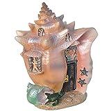 Fiddlehead Fairy Garden Conch Condo Shell Fairy House Review