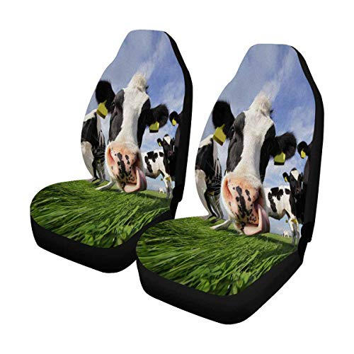 INTERESTPRINT Holstein Cow in Field Front Car Seat Covers Set of 2, Car Front Seat Cushion Fit Car, Truck, SUV or Van (Cow Seat Covers)