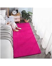 SZBLYY Deurmat Lange huis tapijten in de woonkamer slaapkamer sofa stoelen areaal vloer tapijten pluizig bad mat voor nachtkastje antislip wasbaar