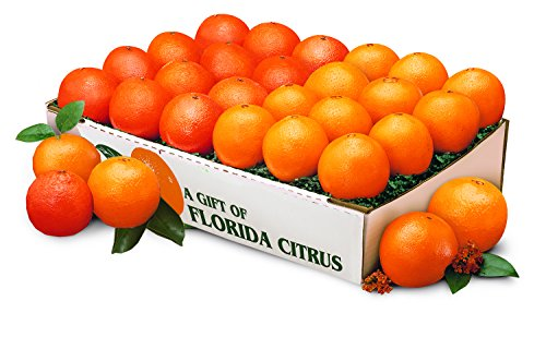 Florida Navel Oranges and Florida Tangerines (Indian River Fruit compare prices)