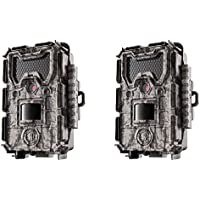 Bushnell 24MP Trophy Cam HD No Glow Trail Camera with Color Viewer, Camo (2-Pack)