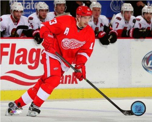 (Pavel Datsyuk Detroit Red Wings 2013-2014 NHL Action Photo #5 (Size: 8