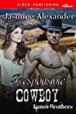Responsible Cowboy [James Brothers] (Siren Publishing Allure)