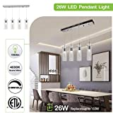 4-Light Pendant Ceiling Fixture, Integrated LED