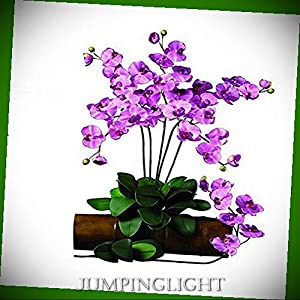 JumpingLight Phalaenopsis Silk Orchid Flower with Leaves (6 Stems) Artificial Flowers Wedding Party Centerpieces Arrangements Bouquets Supplies 16
