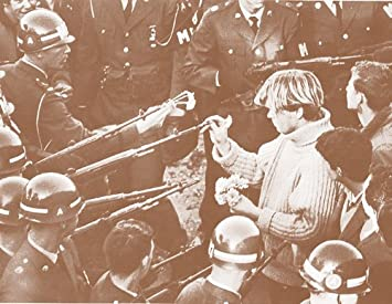 Vietnam War Protest Flower