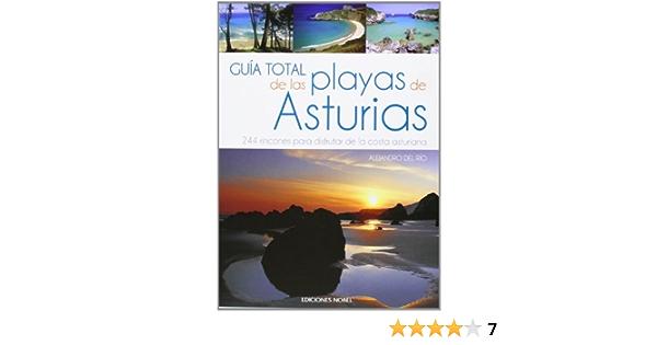 Guía de las playas de Asturias: Amazon.es: DEL RIO FERNANDEZ , ALEJANDRO: Libros