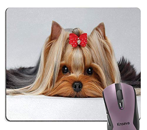 Knseva Yorkie Mouse Pad, Lying Yorkshire Terrier with Cute Ribbon Yorkie Love Portrait of a Dog Mouse Pads