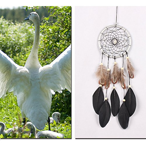 WinnerEco Black Dream Catcher with Feather Bead Wall Car Hanging Decoration