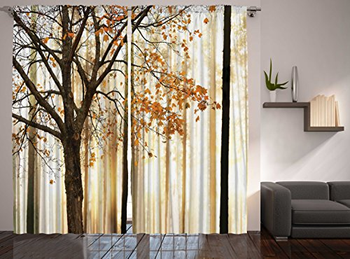 Art Curtains Living Room Amazon