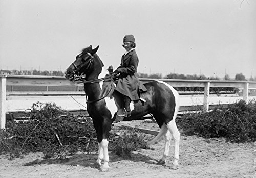 1918 photo HORSE SHOWS. MRS. LOUISE McLANAHAN Vintage Black & White Photograp g4
