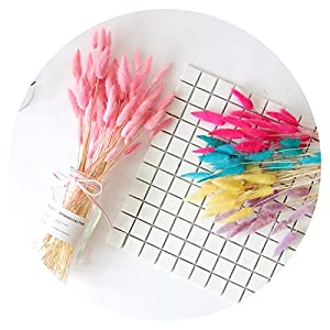 Artificial Flowers for 20pcs Natural Dried Flowers lagurus White Artificial Flowers Colorful Fake Rabbit Tail Grass ovatus Foxtail Bouquet Long Bunches 109
