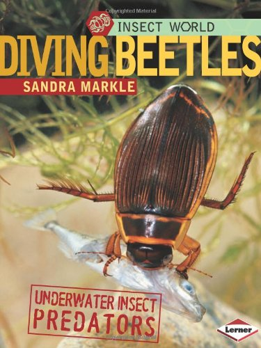 Download Diving Beetles: Underwater Insect Predators (Insect World) pdf epub