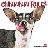 Chihuahua Rules 2018 Calendar