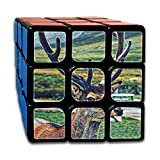 3x3x3 Puzzle Cube Reindeer Painting Ultra-smooth Brain Game Puzzle Toys Rubik's Cube For Adults Kids Anti Stress Anti-Anxiety