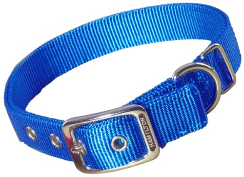 Hamilton Double Thick Nylon Deluxe Dog Collar, 1-Inch by 22-Inch, Blue
