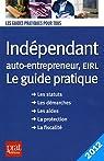 Indépendant et auto entrepreneur, EIRL Le guide pratique par Serio