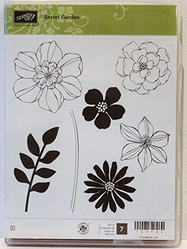 (Stampin Up SECRET GARDEN clear mount stamps Flowers Petals leaves stems daisy)