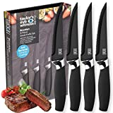 Taylors Eye Witness Brooklyn 4 Piece Steak Knife Set in Black and Chrome