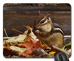 Autumn Chipmunk 1 Mouse Pad, Mousepad (Squirrels Mouse Pad)