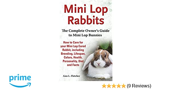 Mini Lop Rabbits The Complete Owners Guide To Mini Lop Bunnies