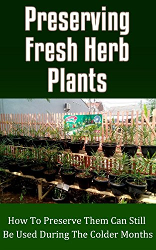 preserving-fresh-herb-plants-how-to-preserve-them-can-still-be-used-during-the-colder-months