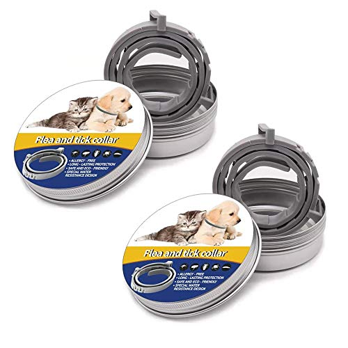 Okutani Flea Collar for Cats, 2 Pack Flea and Tick Prevention for 8 Months-Safe Hypoallergenic Adjustable Waterproof Design-One Size Fits All Cats