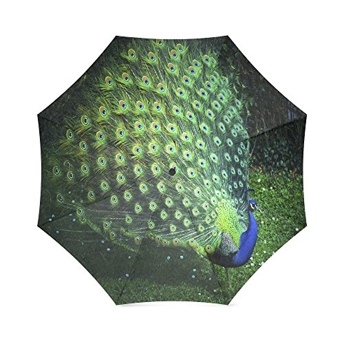Christmas/New Year Gift Beautiful Peacock Feather Peacock Foldable Sun/Rain Umbrella Sunshade Parasol