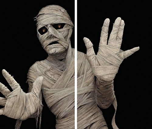 WOWindow Posters Menacing Mummy Halloween Window Decoration Includes Two 34.5