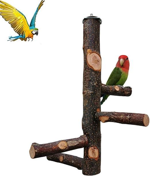 GUALA Soporte de Descanso para pájaros Escalera de Caracol de Loro Soporte de Madera de Manzana Natural Estante de Descanso Gimnasio para pájaros Parque Infantil: Amazon.es: Hogar
