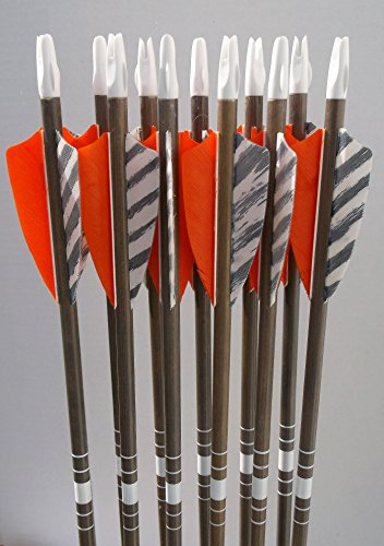 Youth cedar arrows orange/barred feathers (12)