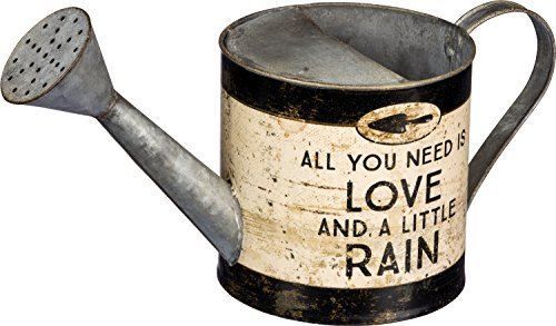 All You Need is Love And a Little Rain Tin Gardening Watering Can by PBK