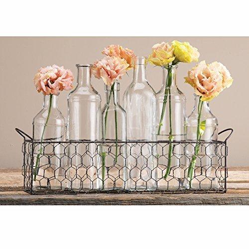 Home Essentials & Beyond 6 Piece Bottle Vase with Chicken Wire Basket