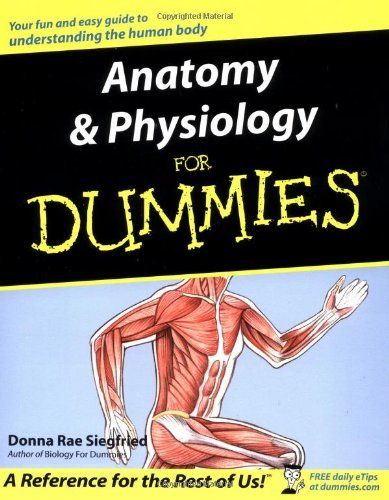 by Donna Rae Siegfried Anatomy and Physiology for Dummies(text only ...