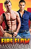 Fire Flow (The Guardian Series Book 4)
