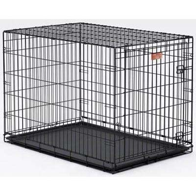 Midwest Homes for Pets Life Stages Single-Door Folding Metal Dog Crate – Black – 36 X 24 X 27 Inch