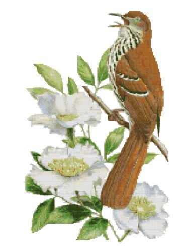 Georgia State Bird (Brown Thrasher) and Flower (Cherokee Rose) Counted Cross Stitch Pattern