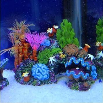 Generic O-1-O-5470-O - Figura decorativa para acuario o cueva, 14 cm, diseño de peces, arrecife NV_1001005470-NHUK17_2090: Amazon.es: Electrónica