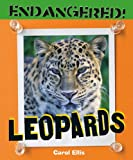 Leopards, Carol Ellis, 0761440526