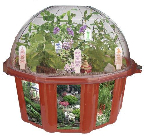 Dome Terrarium - 9