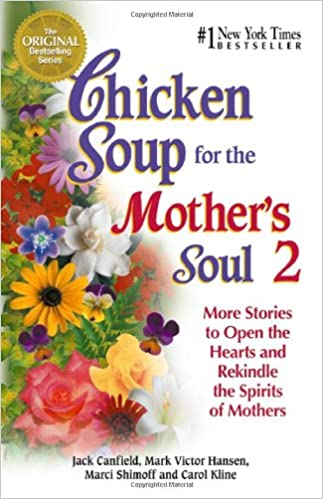 Image result for chicken soup for the mother's soul 2