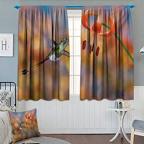 Anhounine Hummingbird,Blackout Curtain,The Booted Racket Tail Feeding Nectar from Tiger Lily Blur Background Photo,Drapes for Living Room,Orange Green,W63 x L72 inch (Drapes Tiger Lily)