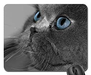 Blue look Cute Cool Decorative Design Animal Cat Mousepad Rainbow Designs