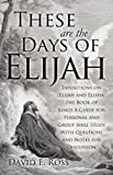 These Are the Days of Elijah, David E. Ross, 1622308050