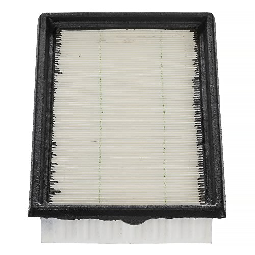 Champion CAP10242 Engine Air Filter (Champion Filters Air)