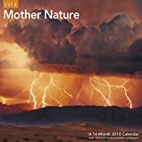 2018 Mother Nature Wall Calendar (Mead)