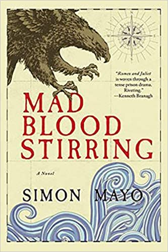 Amazon com: Mad Blood Stirring: A Novel (9781643130033