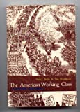 img - for The American Working Class: A Materialist Assessment book / textbook / text book